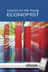 Lessons for the Young Economist - Digital Book